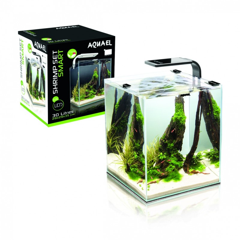 nano aquarium 30l poissons online. Black Bedroom Furniture Sets. Home Design Ideas