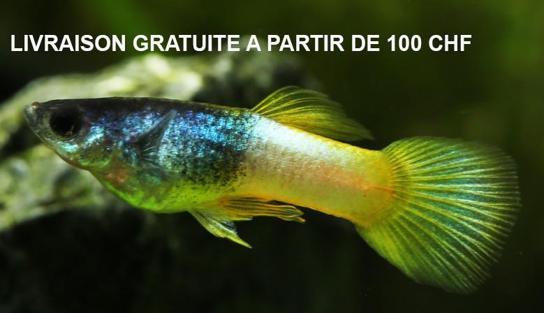 100 fr